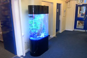 aquatech - manchester | bespoke and designer aquariums and fish tanks