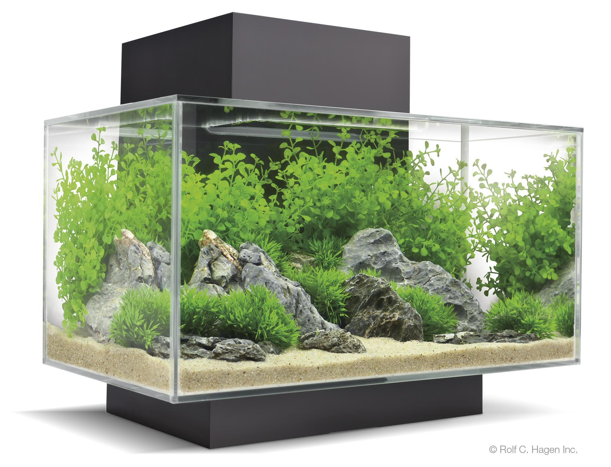 Fluval edge click for details bespoke designer for Fluval fish tank