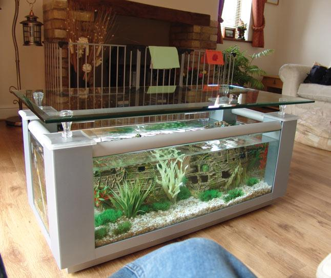 Table Tanks Bespoke Designer Aquariums amp Custom Fish