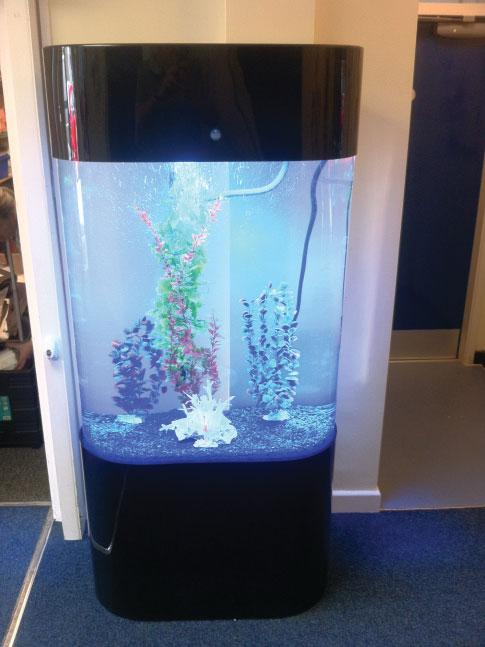 Oval Tower Designer Aquarium