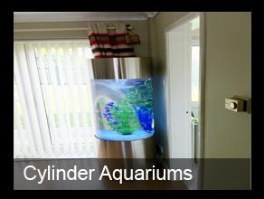 Bespoke Designer Aquariums & Custom Fish Tank Accessories, Aquarium