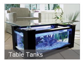 Products bespoke designer aquariums custom fish tank for Coffee table fish tank for sale