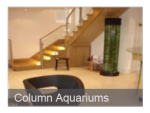 Column Aquariums
