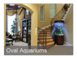 Oval Aquariums